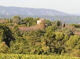 Photo Majestic Farm and Vineyard Close to Bonnieux